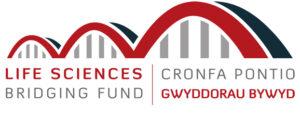 Bridging Fund logo